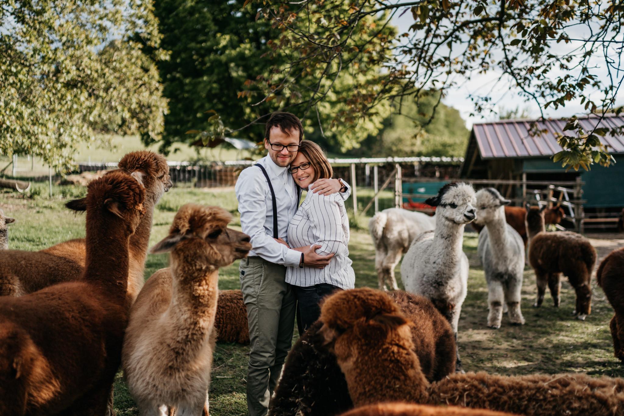 Paarshooting mit Alpakas im Odenwald