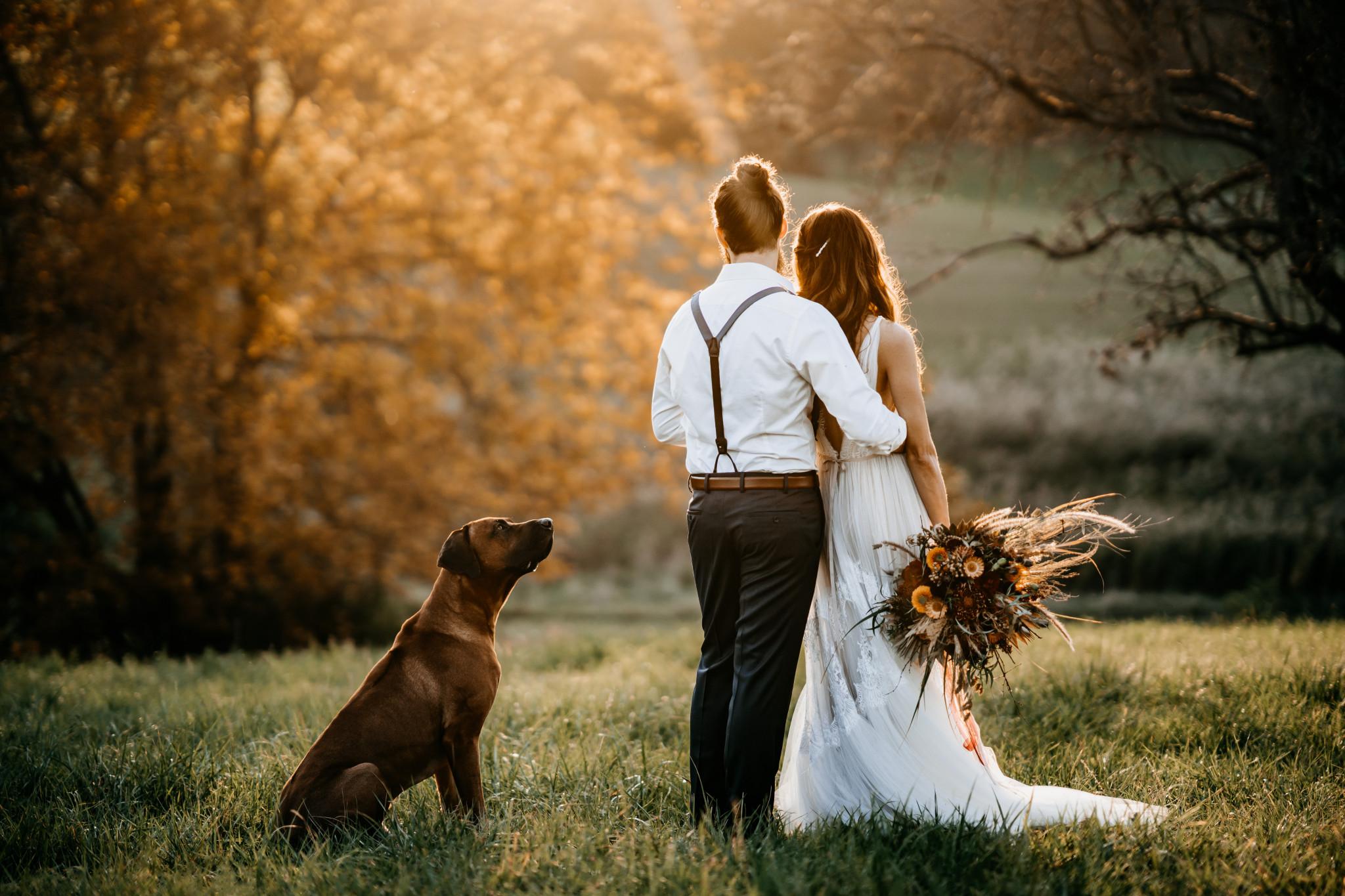 Bohemian After-Wedding-Shooting Sunset